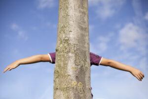 Groupes musculaires pour un tronc solide
